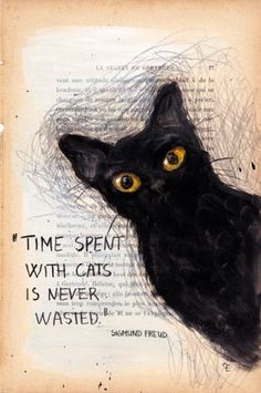 """Time spent with cats is never wasted"" - ""On ne perd jamais son temps avec les chats"". Freud."