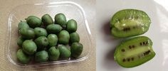 17th Sept 2013. My food find of the day - Kiwi berries :)