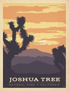 This Joshua Tree National Park Wall Decal radiates with natural California desert beauty, with retro travel poster art you can easily stick up and remove! Copyright 2013 Anderson Design Group, Inc. American National Parks, California National Parks, California Art, Vintage California, California Travel, Party Vintage, Vintage Art, Voyage Usa, National Park Posters