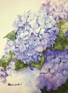 Artist:Kitipong Maksin  Watercolour painting  Size:23x31cm. Title: Hydrangea flowers