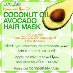Time for a #HomemadeHowTo! Ultra-lux coco oil, rich #avocado, and luscious #milk make a deadly combo for beating dry #winterhair! 💚 ❄️  🌧 Try this recipe and tell us how many compliments you get! 💕 🌴 #CoconutandCompany #CoconutOilLovers / Coconut and Company coconut oil for beauty. Organic, fresh, and pure for glowing hair and skin!