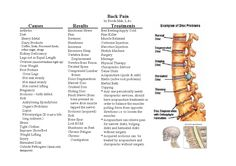 Back Pain Chart Universal Acupuncture And Traditional Chinese - 1169x826 - jpeg