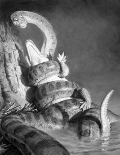 Nope VS Nope situation Green Anaconda vs Crocodilain species, probably a Spectacled caiman juvenile Reptiles And Amphibians, Mammals, Snake Art, Extinct Animals, Dinosaur Art, Prehistoric Creatures, Fauna, Stuffed Animals, Illustrators