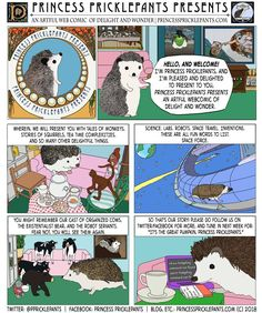 Princess Pricklepants Presents Princess Pricklepants Presents issue one. Cute Hedgehog, Shiloh, Hedgehogs, Cute Animals, Presents, Princess, Comics, Heart, Awesome