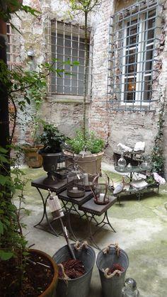 #Vivere #il #giardino #d'#estate #in #questa #festosa #stagione, #in #cui #si #è #liberi #di #essere #se #stessi #e #l'#aria #è #vacanziera. #Fuori, #all'#ombra #di #un #fico, #con #un #libro #di #racconti #e #le #cicale #per #compagnia...