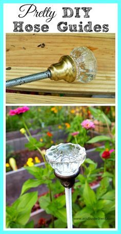 Here's a cute garden project! How to make pretty hose guides using vintage door knobs!