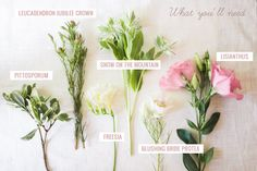 love this guide of flowers
