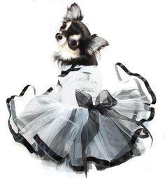 aff6e4d5c Notorious Tutu Dress with Rhinestones