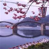 Return to Japan, travel the country, go cormorrant fishing on the Kintai river, have a picnic at Kintai park during the Cherry Blossom Festival, see Japanese friends again, get lost hiking around Mt Fuji, Gotemba and other traditional Japanese villages. Take the shinkanzen and local trains to Hiroshima and Iwakuni. Eat sushi, shabu-shabu, visit temples