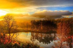 Autumn at Tarn Hows in the Lake District is very special. Thanks to Becka for this photo.