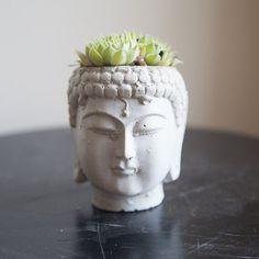 Buddha Head Planter por brooklynglobal en Etsy