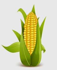 Maize prices ended lower by 0.25 per cent on Monday at the National Commodity & Derivatives Exchange Limited (NCDEX) as a result of heavy selling activity by the traders on account of higher global supplies and weak offtakes from the local buyers.