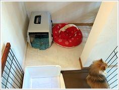 ◆Web内覧会 階段(ドッグスペース&ルンバの基地) - 家づくりぶろぐ~低予算でどこまでこだわれるか頑張るblog~