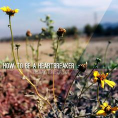 Tuesday Tunesday 01: How To Be A Heartbreaker