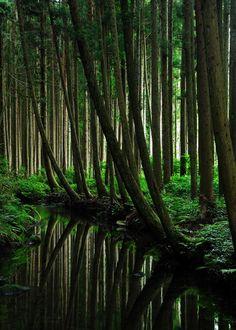 perfect protective self-preserving Nature: Ushiwatari river, Yamagata, Japan