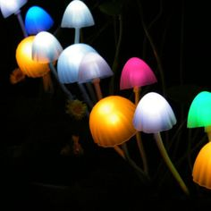 solar LED mushroom lights