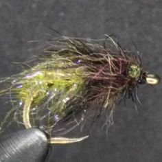 Another super buggy caddis pupa. This time it has some icedub and eyes. #flytying #flyfishing