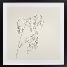 Click to see 'Grass with Seeds' on Minted.com