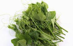 鋐洲有機農場 | SuperBuy市集 - 給您健康的好味道