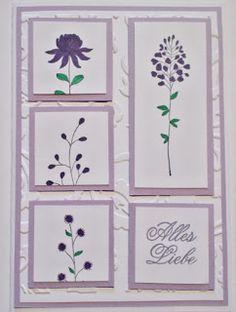 Flowering Fields Zassas Stamp & Craft