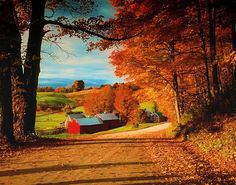 jenne farm, near woodstock, vermont, early october