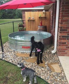 34 Simple DIY Playground Ideas For Dogs Pet Advice, Pet Care Articles brought to you by the Pet Lovers. If you're a pet lover, sure you like us. Diy Playground, Puppy Playground, Outdoor Cat Run, Outdoor Fun, Dog Backyard, Backyard Landscaping, Landscaping Ideas, Dog Friendly Backyard, Backyard Ideas