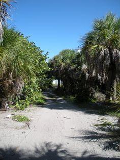 Eggmont Key Island, Florida