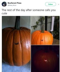 """Not everyone is good at carving pumpkin for Halloween. Like LisaShuBop, she created """"the laziest pumpkin carving"""". Funny Pumpkin Carvings, Cute Pumpkin Carving, Pumpking Carving, Disney Pumpkin Carving, Pumpkin Carving Patterns, Fröhliches Halloween, Halloween Pumpkins, Halloween Decorations, Funny Tweets"""