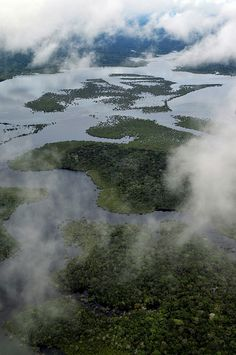 Aerial view of the Amazon Rainforest ~Repinned Via Maria Lacerda