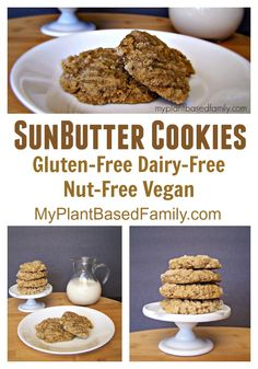 SunButter Cookies are peanut and tree nut free! They are also gluten-free! Very allergy friendly for those with food allergies. These vegan cookies are perfect for lunch boxes! Vegan Dessert Recipes, Vegan Sweets, Healthy Desserts, Whole Food Recipes, Cookie Recipes, Snack Recipes, Vegan Food, Allergy Free Recipes, Lunch Boxes