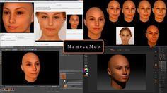FaceGen Modeller 3 5