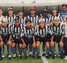 Botafogo, Campeão Brasileiro de 1995.