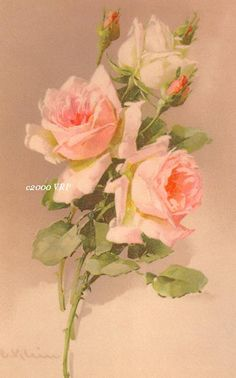 Print FREE SHIP Victorian Rosebuds by by VictorianRosePrints, $11.99