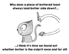 Cat and Butter