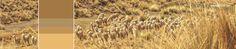 Michell Calendar- Andean Heritage Colour Inspiration - May 2016 #alpaca #alpacayarns #finestperuvianalpaca