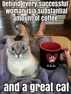 Yes, I agree! Caffeine and cats. Oh, and chocolate...we can't forget chocolate!