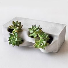 Emerging Objects' Planter Brick. 3D printed concrete bricks ready to grow in! Perfect for succulents, strawberries, etc... Emerging Objects is the research arm of RAEL SAN FRATELLO ARCHITECTS.