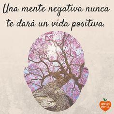 Una mente negativa jamás te dara una vida positiva. #objetivobienestar
