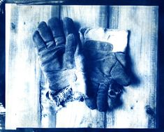 Gloves on an 8x10 Adox CHSII negative.