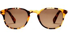 "Warby Parker ""Downing"" sunglasses in Walnut Tortoise."
