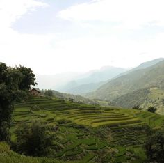 Sapa Mountains, World, Places, Nature, Travel, The World, Voyage, Viajes, Traveling