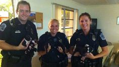 Police and firefighters rescue litter of puppies from parked U-Haul truck