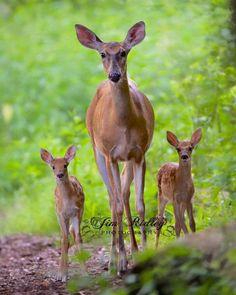 Lovely family!