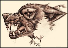 Snarling Wolf by ~bluesharingan07 on deviantART