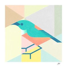 Green_&_Orange_Bird