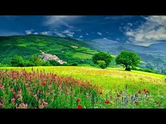 Lovely Mountains Grass Field Pretty Nature Background Video, Royalty fre... Frame Download, Download Video, Video Background, Wedding Background, Beautiful Landscape Wallpaper, Beautiful Landscapes, Download Adobe Photoshop, Video Editing Apps, Video Effects