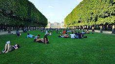 Link in bio#thatchillaxdude  The French know a thing or two about parks!  #followyourarrow #travel  #wandern #travelbug #travelgram #wanderlust #notallwhowanderarelost #instalike #instatravel #instatraveling #photography #holiday #tourism #vacation #followme #travelblogger #passportready #worldtravel  #natgeo #wander #explore #explorer #summer #europe #france #paris #parisisalwaysagoodidea  #architecture