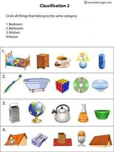 Classification2 worksheets