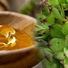Together with raw honey, this leaf is widely used to treat uterine fibroid and cysts without any side effects. This leaf Aloe Vera, Planting Flowers, The Cure, Succulents, Leaves, Healthy Recipes, Nature, Plants, Blog
