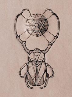 Scarab beetle.